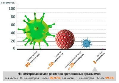 шкала размеров микроорганизмов